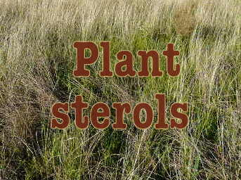 The lowdown on plant sterols experience life.