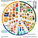 Five Food Group from the Australian Guide to Healthy Eating