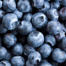 Super foods, the ultimate health foods – the benefits of Blueberries