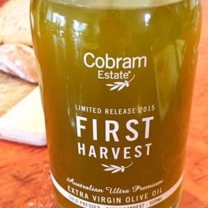 My visit to see the Cobram Estate olive harvest
