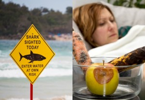July 2017 Foodwatch Newsletter - Shark attack or food poisoning - which is more likely to kill you?