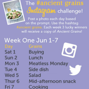Ancient Grains Photo-a-Day Challenge