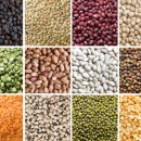 May Foodwatch Newsletter - Lovely legumes