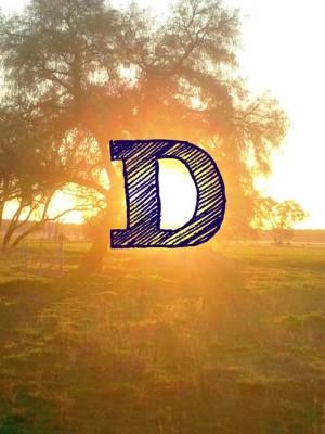What is Vitamin D?  The Sunshine vitamin